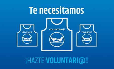 Hazte voluntari@ del banco de alimentos de Cádiz